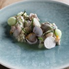 CEVICHE - OESTER - KOMKOMMER 02