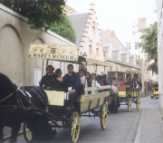 Bruges in group by old horse – tramways